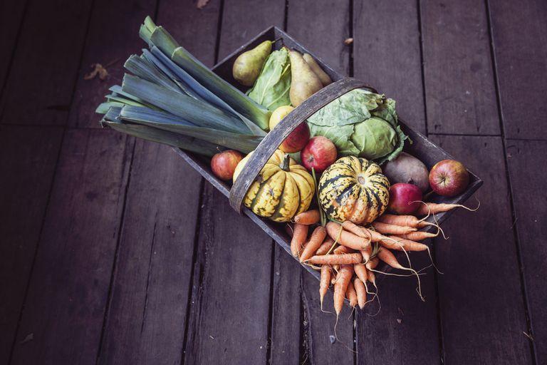 Trug full of fresh vegetables