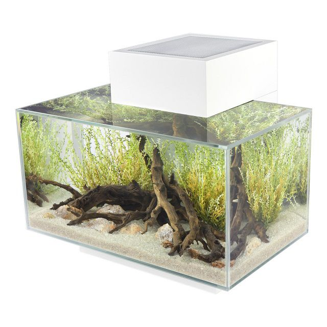 Fluval-Edge-Aquarium-with-LED-Light_640-