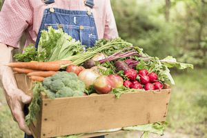farmer holding box of organic vegetables