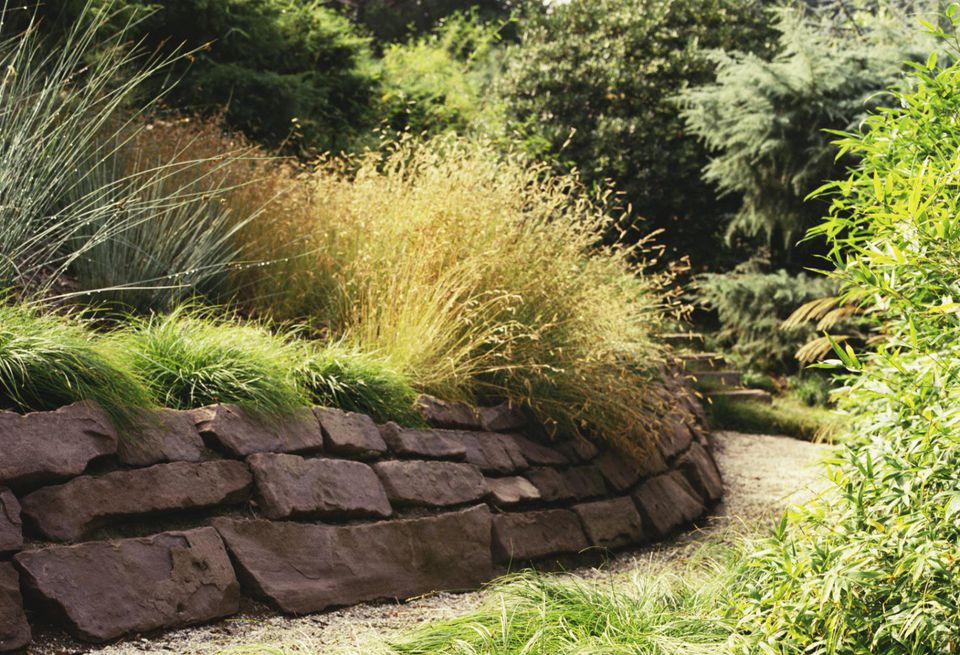 Common Mistakes In Home Landscape Design