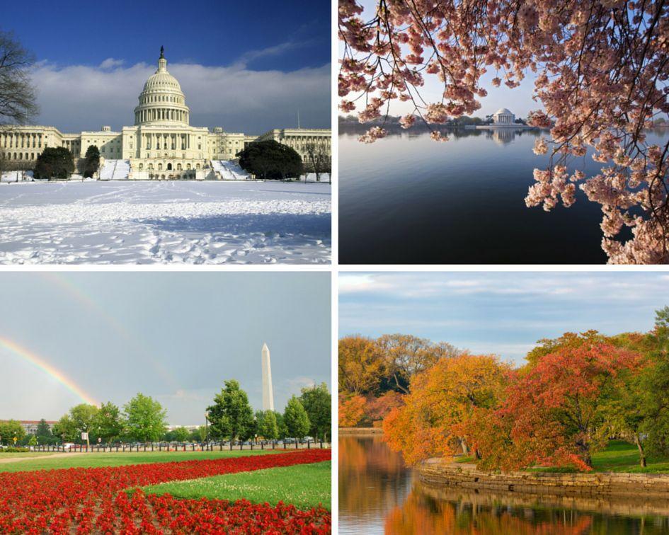 seasons-collage.jpg