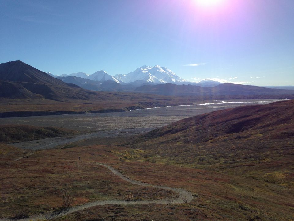 The Park Road in Denali National Park and Preserve