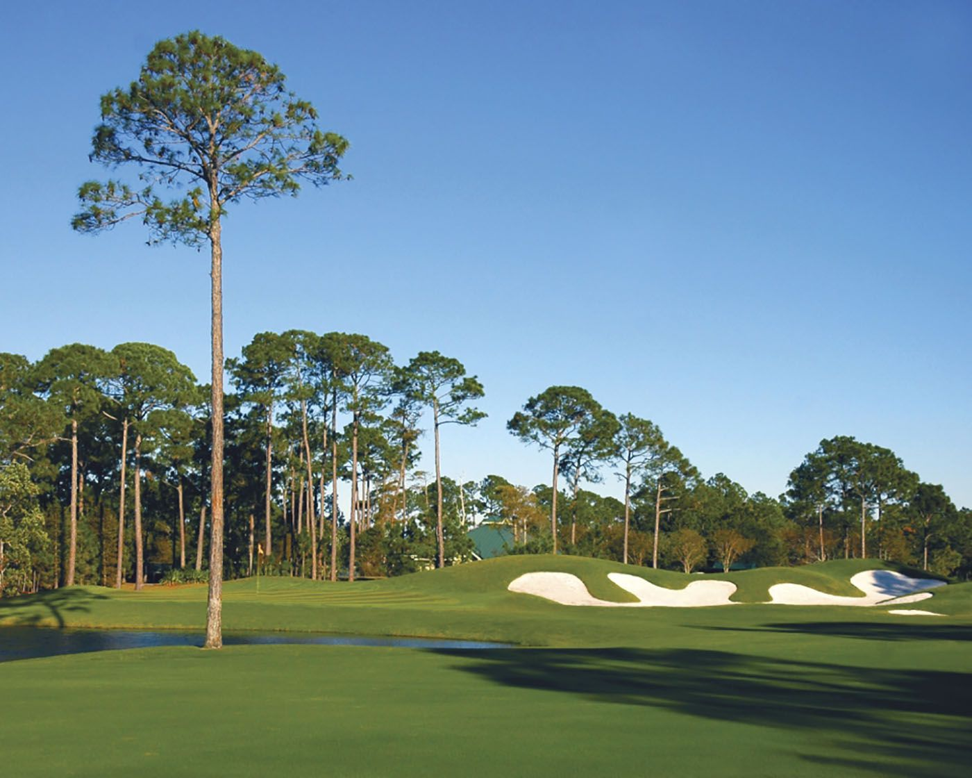 the top golf courses and resorts in naples florida