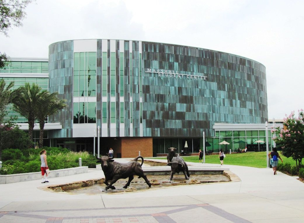 usf admissions sat scores acceptance rate more