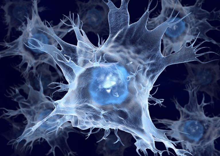 Dendritic cells, artwork