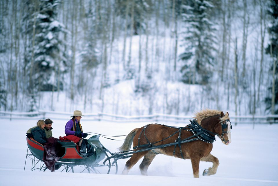 COUPLE IN HORSE DRAWN SLEIGH