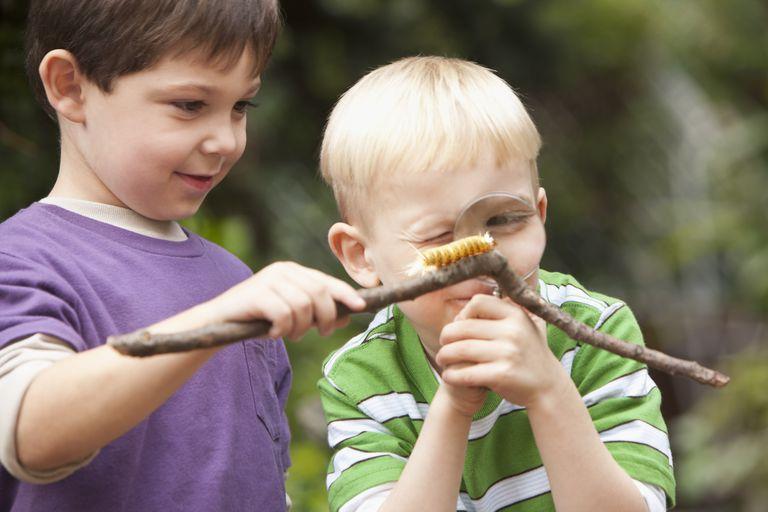 Children looking at a caterpillar.