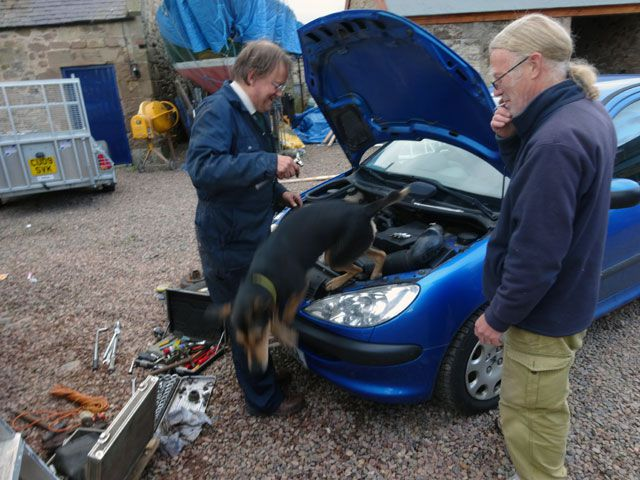 two men and a dog repairing a car
