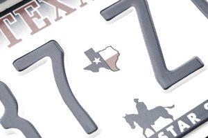 Texas Plate