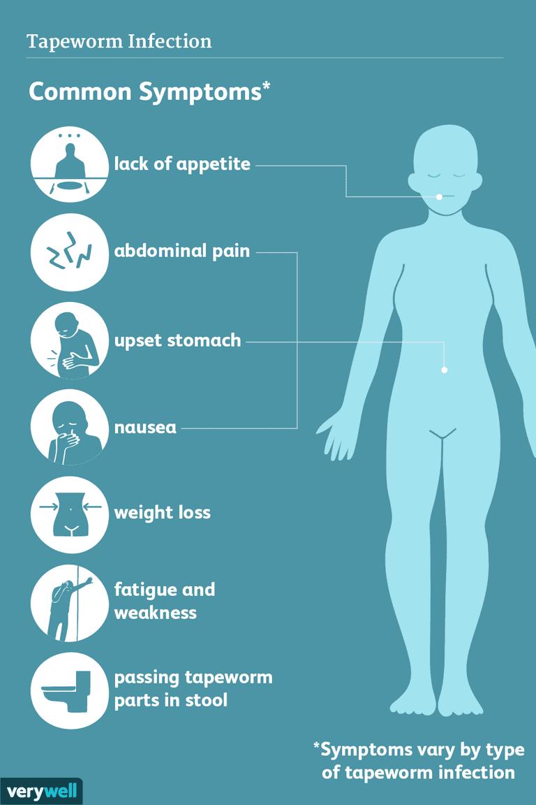 tapeworm symptoms