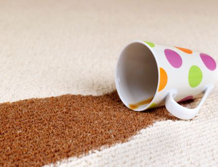 The 9 Best Carpet Cleaners To Buy In 2018