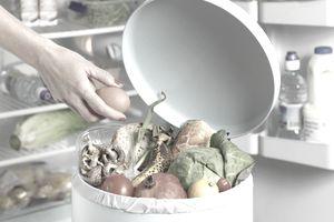 food waste bin cleaning