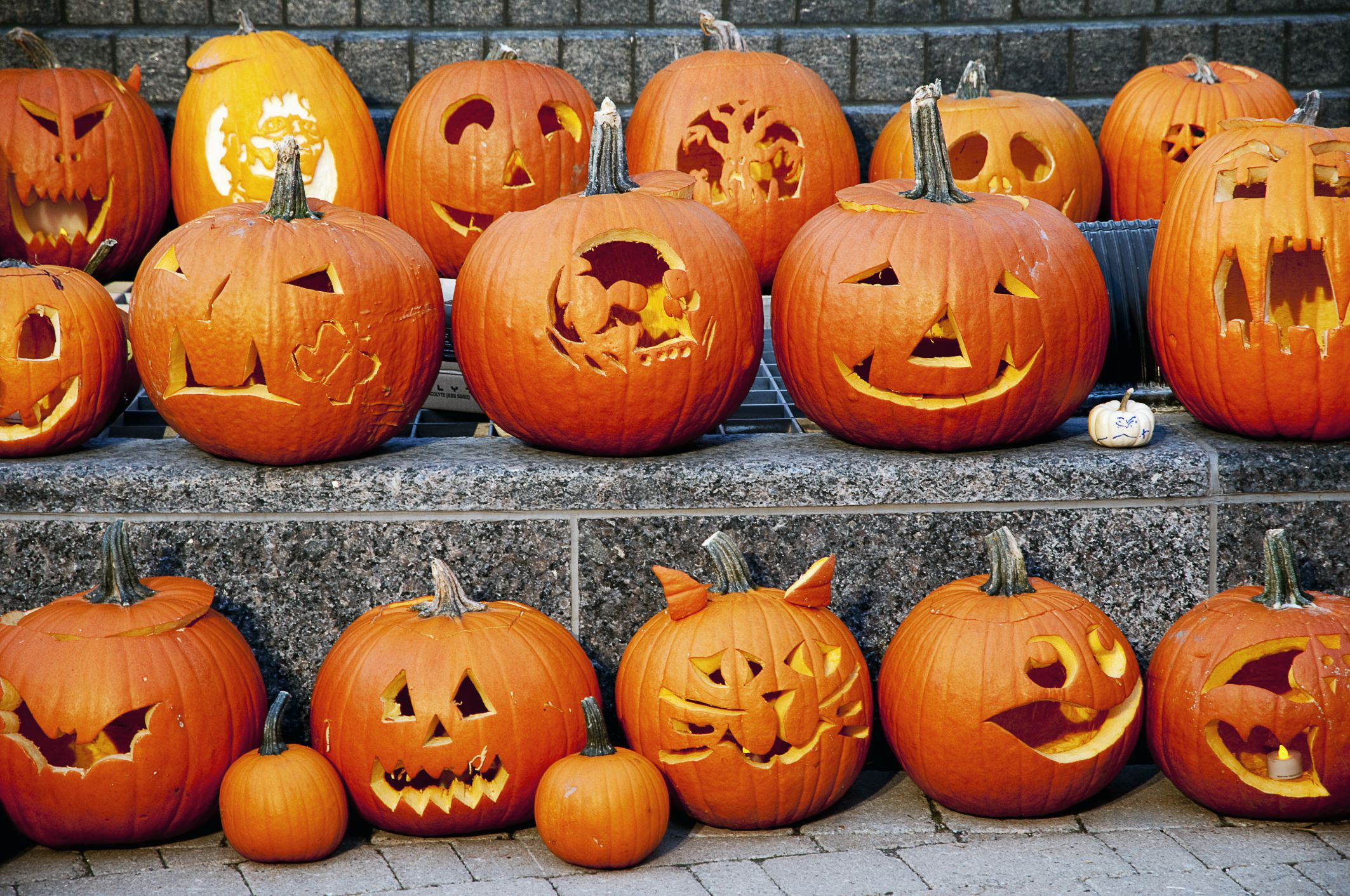 How to Preserve a Carved Halloween Jack-o'-Lantern