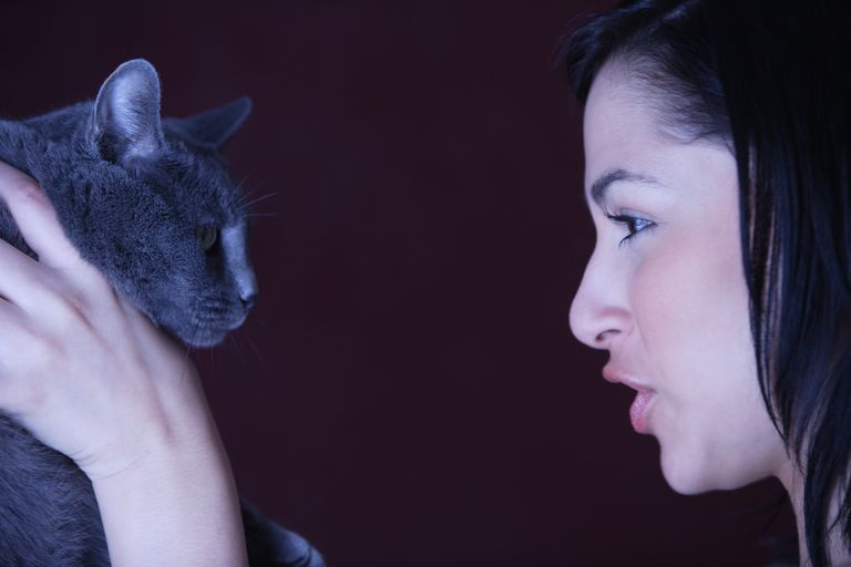 woman talking to a cat