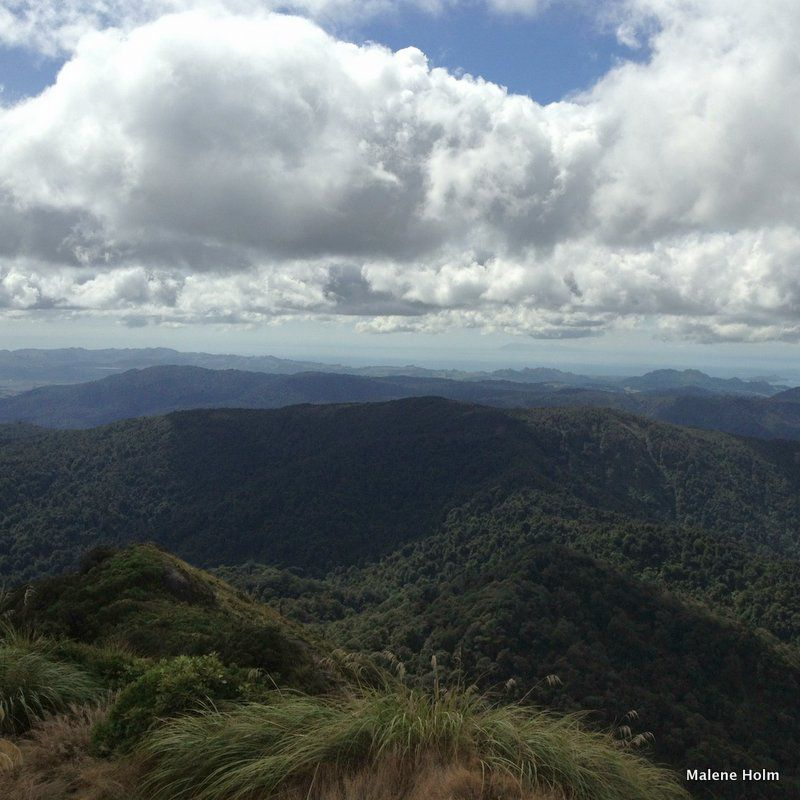 View from the Top of Mt Te Aroha, Waikato