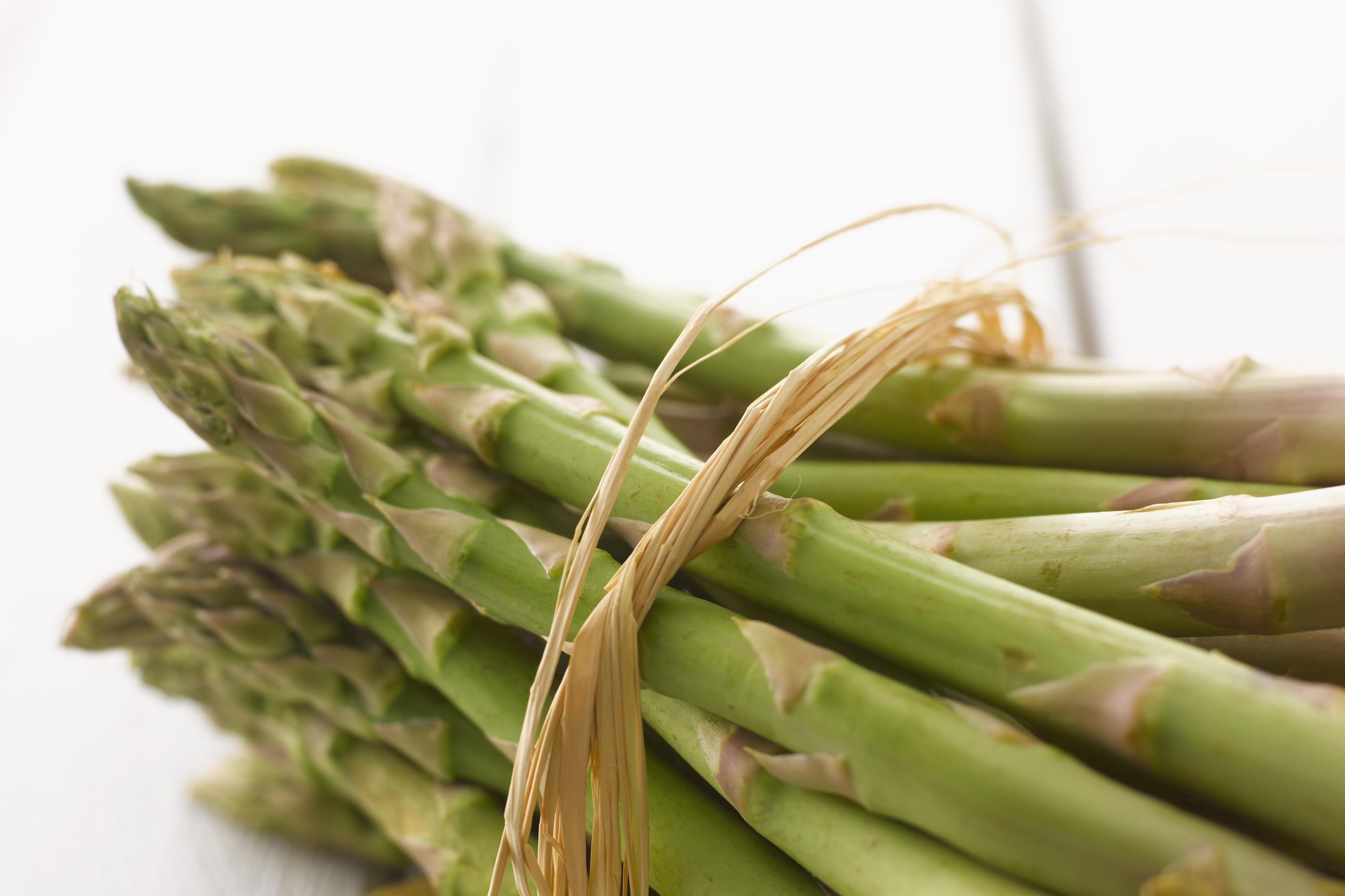why does eating asparagus make urine smell bad