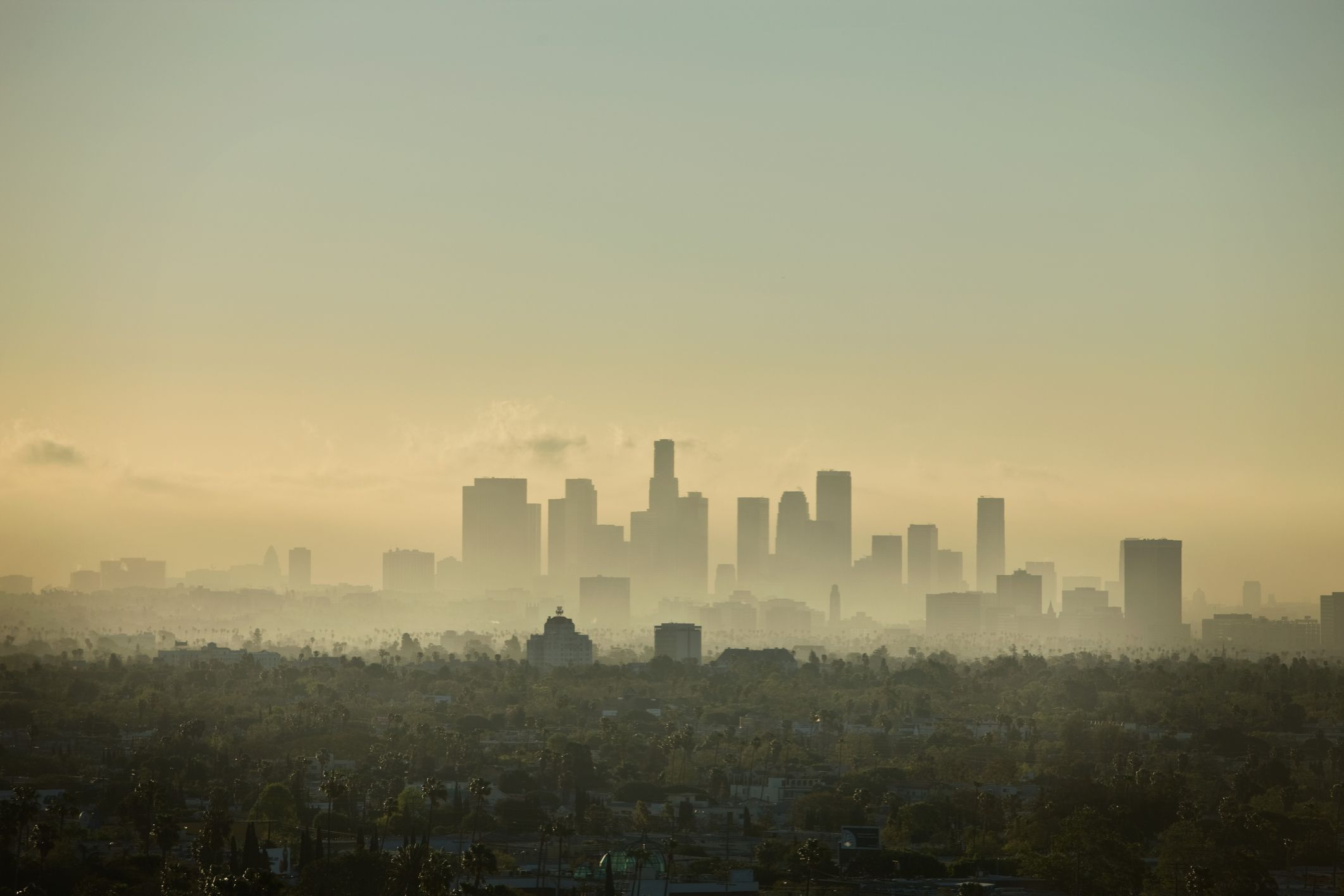 Smog: Photochemical Smog, Air Pollution and Ozone
