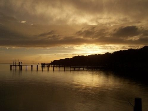 The late afternoon sun casts a shimmering golden glow across Bogue Sound.