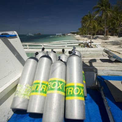 The Benefits of Scuba Diving With Nitrox