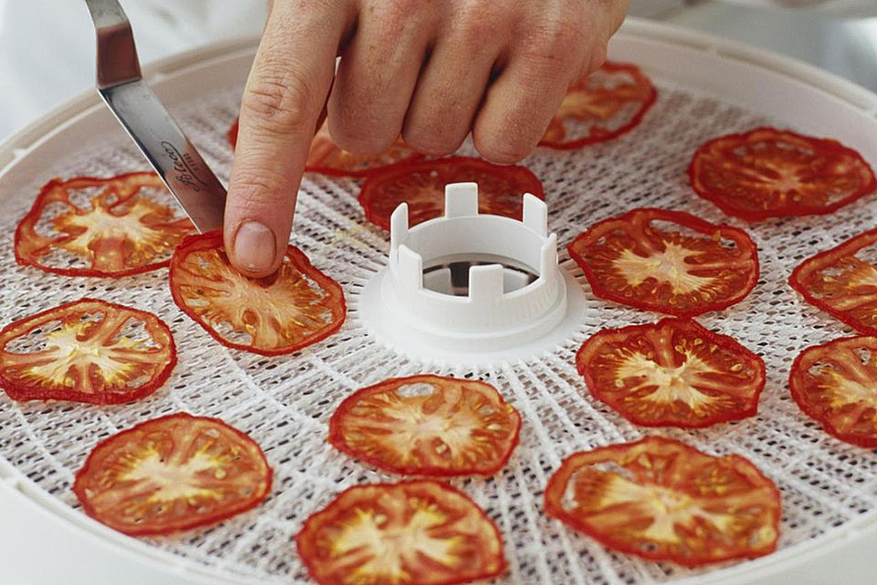 Taking dried tomato slices off a dehydrator shelf