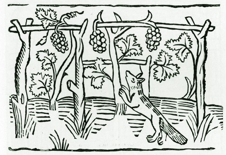 Aesop's Fables: The Fox and the Grapes