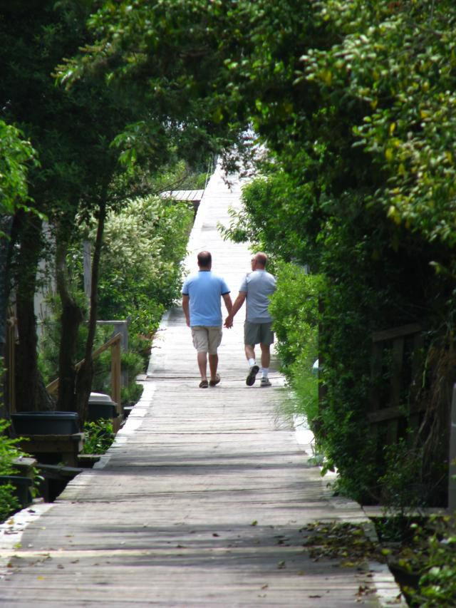 island grove gay singles Book now for our 100% lowest price guarantee and save up to $99 on over 73 grove place lgbtfriendly hotels find the top hotels with no cancelation fees at travelocity.