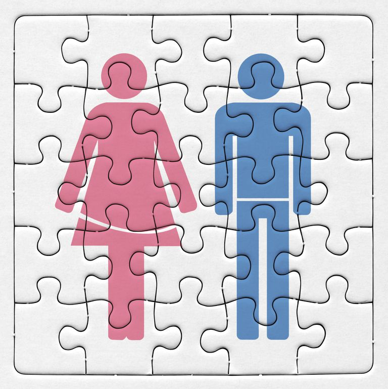 Puzzle pieces representing gender schema