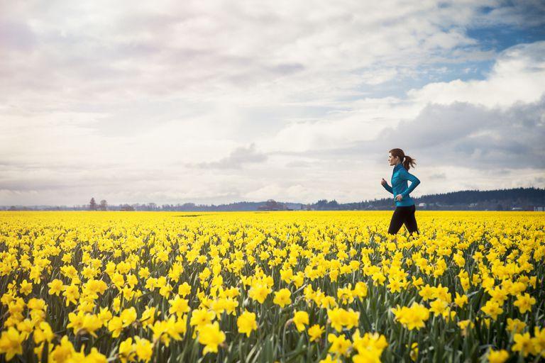 Walking Through the Daffodils