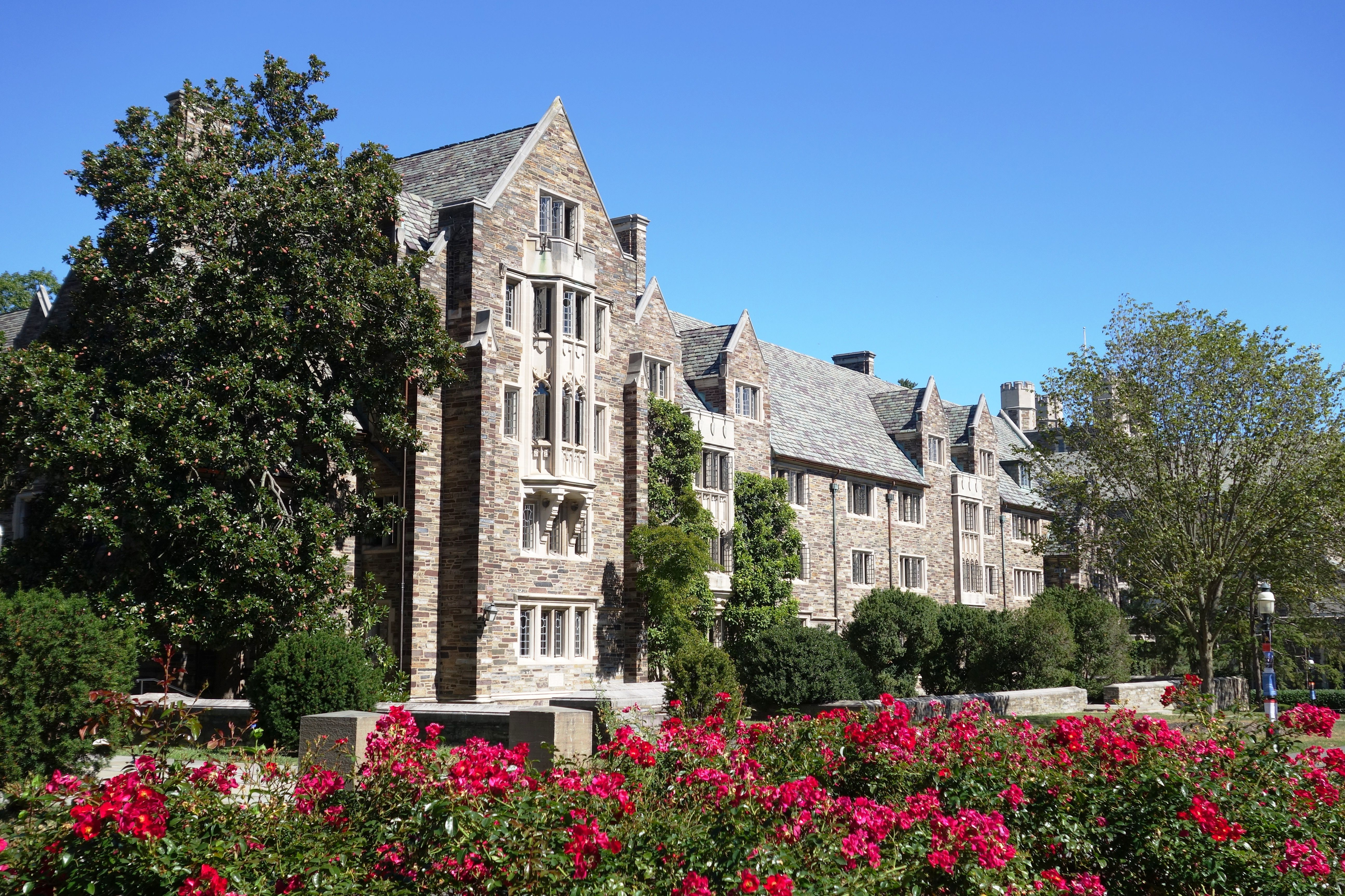 princeton university admissions  sat scores  and more