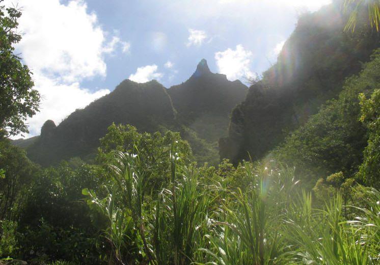 Top Things To Do On Kauai With Kids