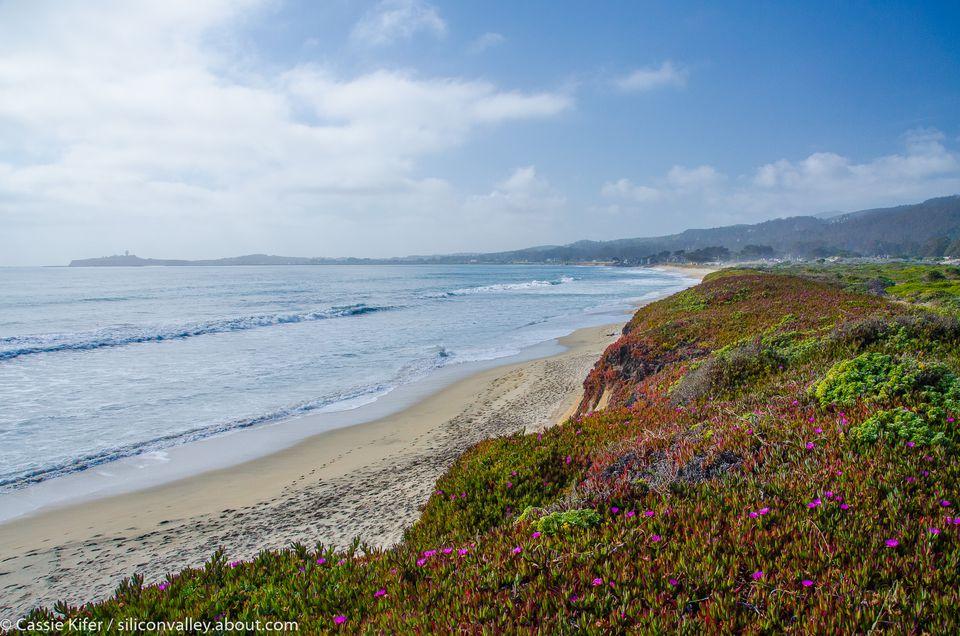 Dunes Beach, Half Moon Bay, California
