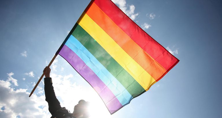 Person holding a rainbow flag during Gay Pride parade
