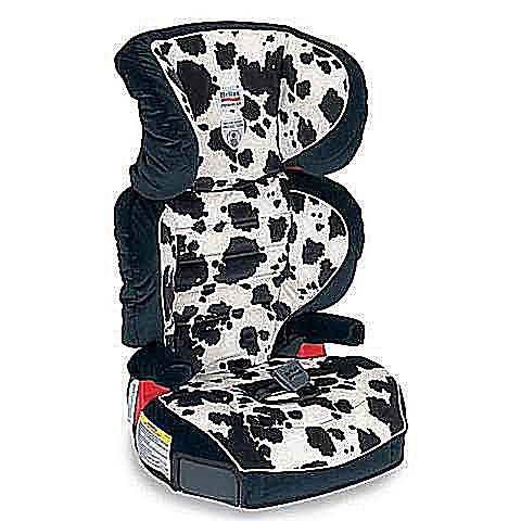 Top 8 Belt Positioning Booster Seats