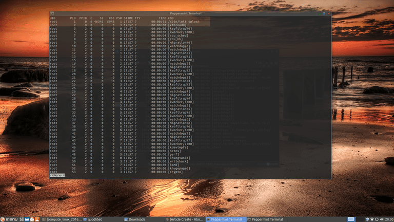The Linux ps Command