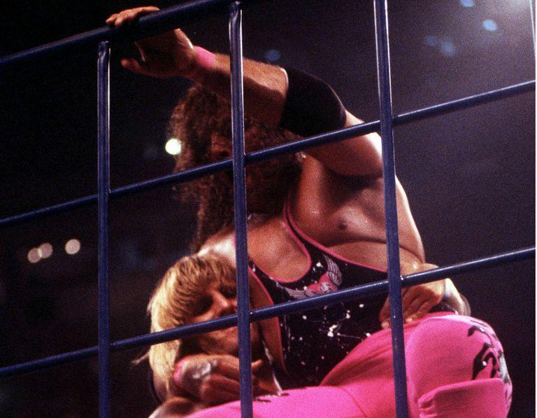 bret-hart-vs-owen-har-summerslam-cage-match.jpg