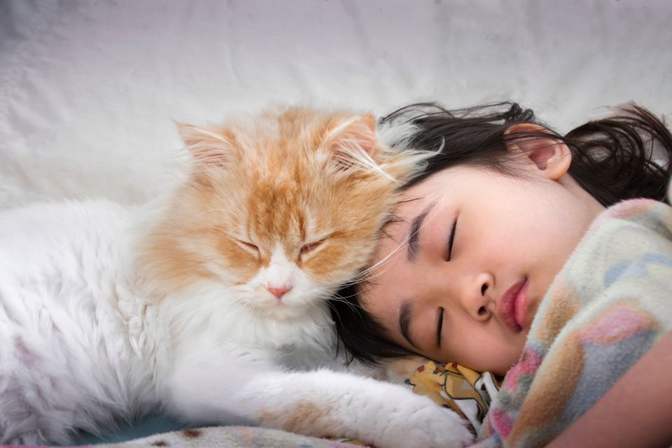 Close-Up Of Cute Girl Sleeping On Bed At Home