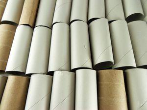 toiletpaperrolls.jpg