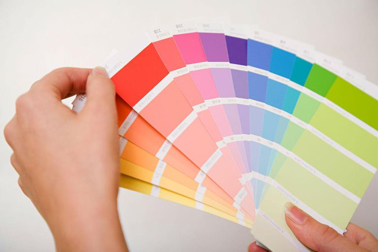 Person holding color charts