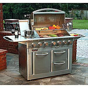 Kirkland Signature Stainless Steel Gas Grill by Nexgrill