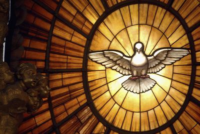 The Seven Gifts of the Holy Spirit (and What They Mean)
