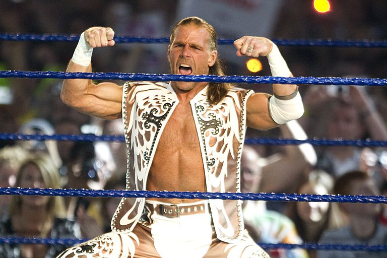 Shawn Michaels at WrestleMania 25.