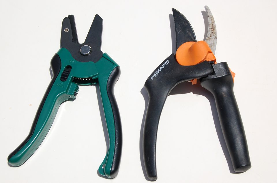 Image of anvil pruners versus bypass. The former can also be ratchet pruners.