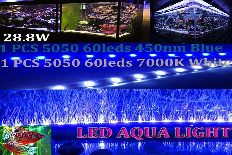 atvantage of LED lights for aquariums
