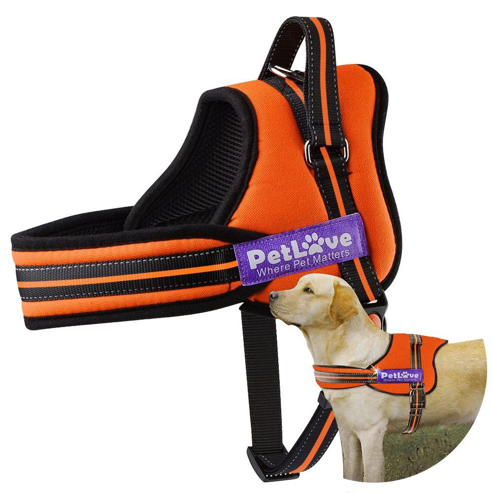 Dog Harness, PetLove Soft Leash Padded