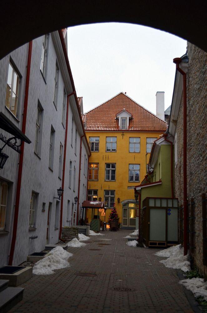 Tallinn Courtyard