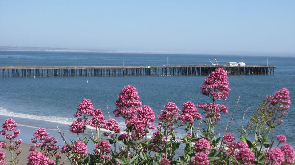 The Avila Beach Pier.