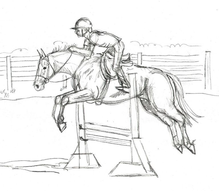 Draw a horse show jumper in colored pencil drawing the outline developing the structural sketch of the horse ccuart Images