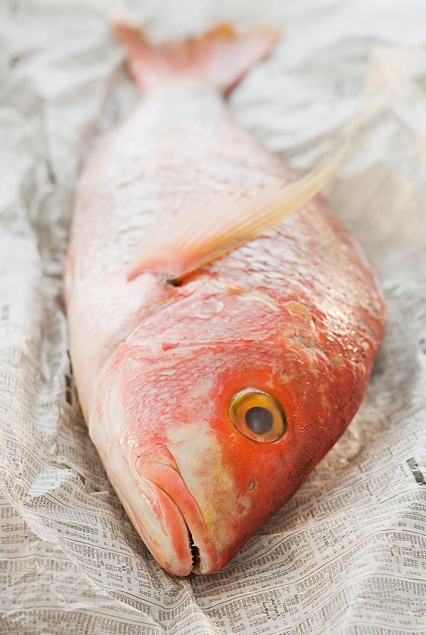Red snapper, the type of fish used in Escoveitched Fish