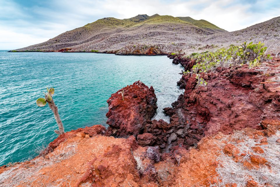 The Galapagos coastline.