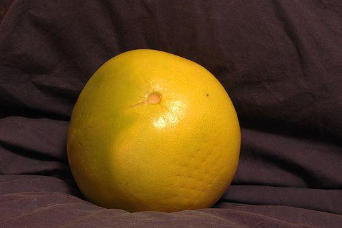 Pummelo - Citrus